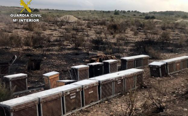 Terrenos quemados por el incendio. /Guardia Civil