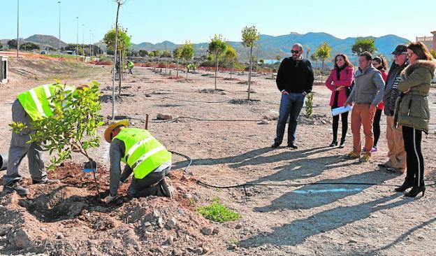 Los alumnos del programa de formación plantan un árbol. 024e85d6fa18