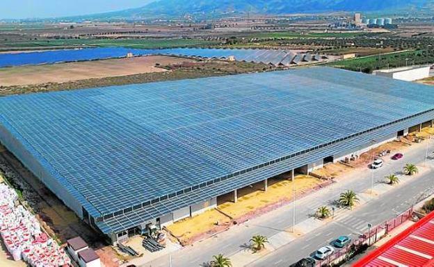 Aerial image of the El Mosca facilities.